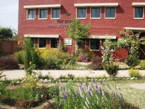 Flowers at their full bloom create a pleasant ambiance around the campus