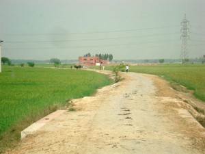 The Village Dirt Road Leading to TCF Campus