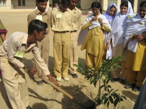 Students Planting in School